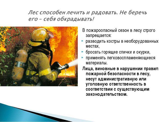 В пожароопасный сезон в лесу строго запрещается: разводить костры в необоруд...