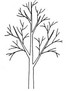 Как нарисовать дерево с ветками Сайт о рисовании