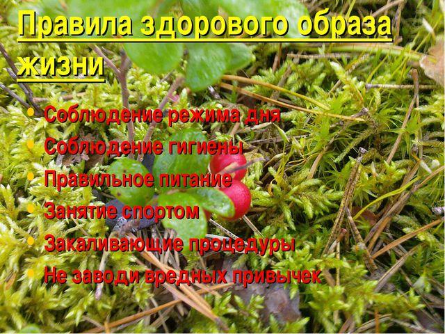 Правила здорового образа жизни Соблюдение режима дня Соблюдение гигиены Прави...