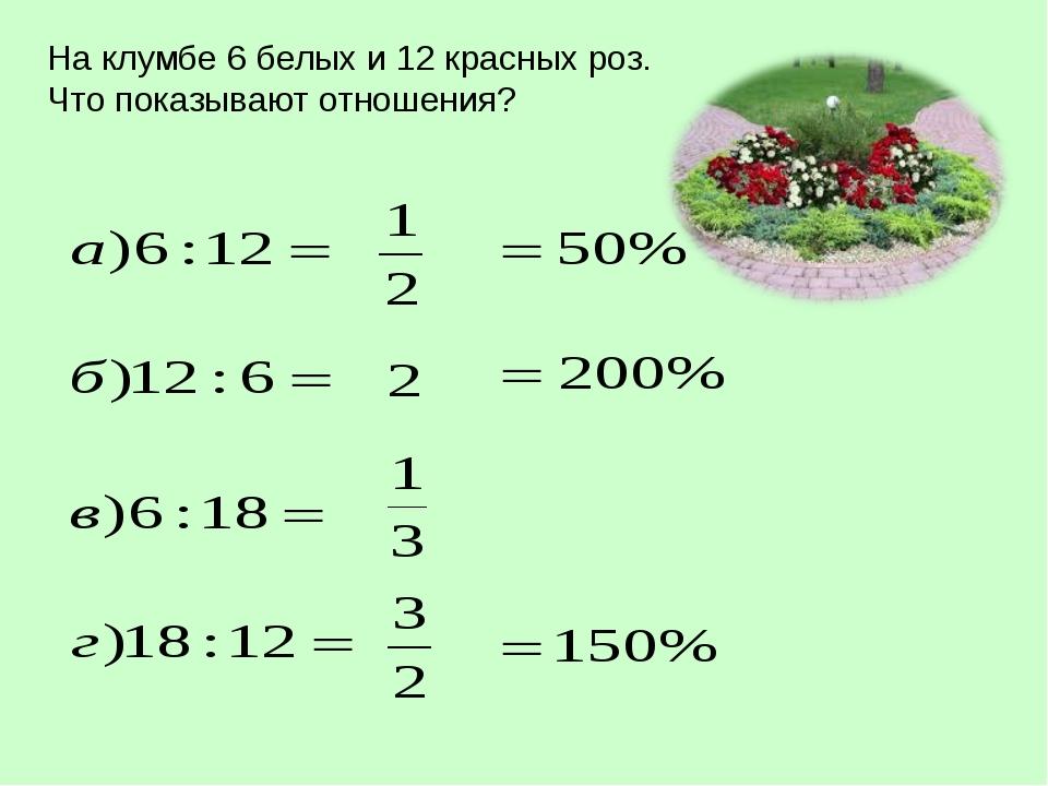 На клумбе 6 белых и 12 красных роз. Что показывают отношения?