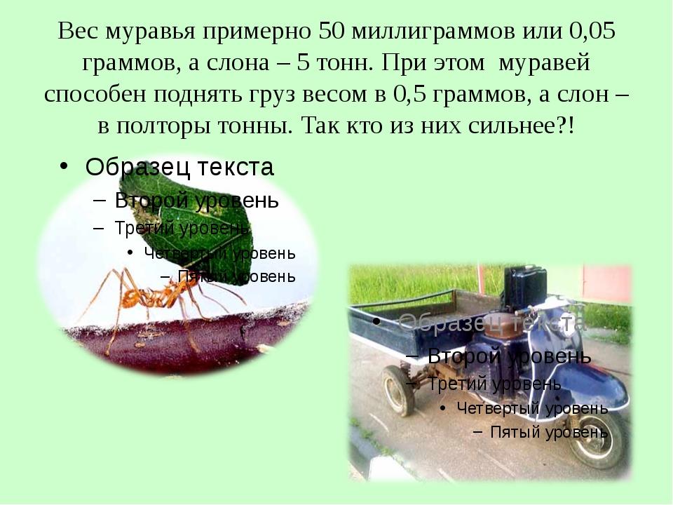 Вес муравья примерно 50 миллиграммов или 0,05 граммов, а слона – 5 тонн. При...