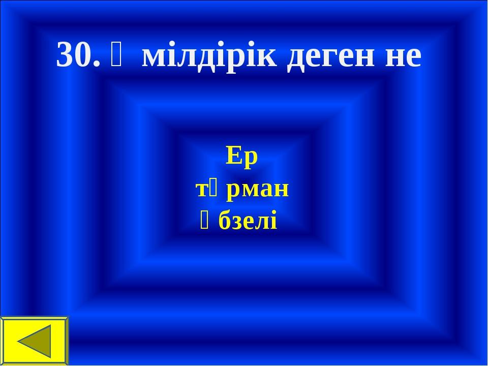 30. Өмілдірік деген не Ер тұрман әбзелі