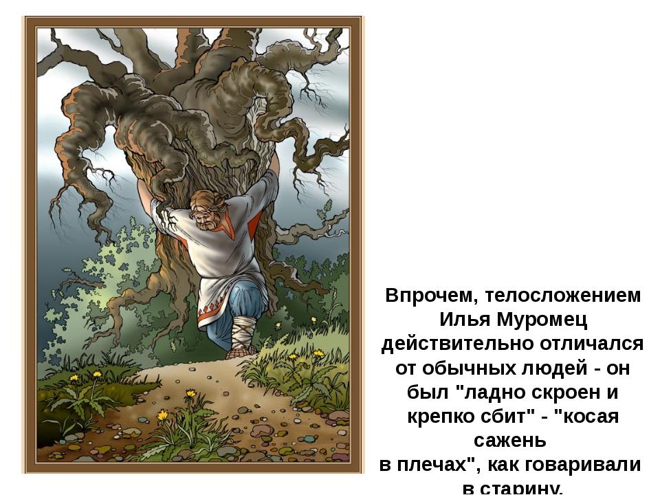 Впрочем, телосложением Илья Муромец действительно отличался от обычных людей...