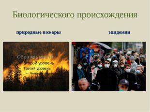 Биологического происхождения природные пожары эпидемии
