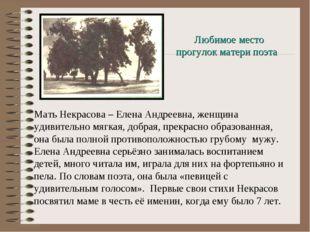Мать Некрасова – Елена Андреевна, женщина удивительно мягкая, добрая, прекрас