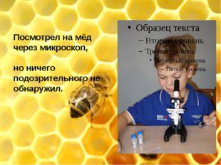 Посмотрел на мёд через микроскоп, но ничего подозрительного не обнаружил.