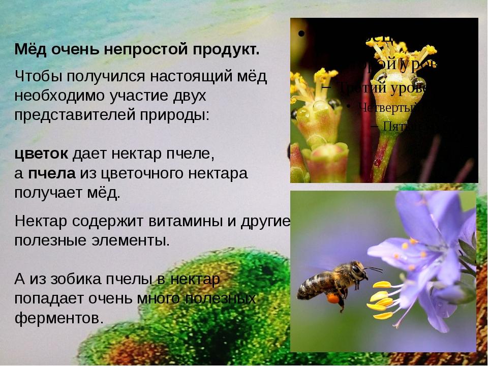 Мёд очень непростой продукт. Чтобы получился настоящий мёд необходимо участи...