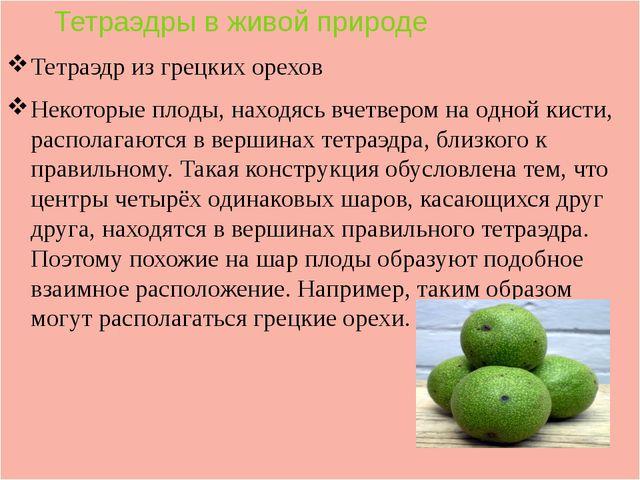 Тетраэдры в живой природе Тетраэдр из грецких орехов Некоторые плоды, находя...