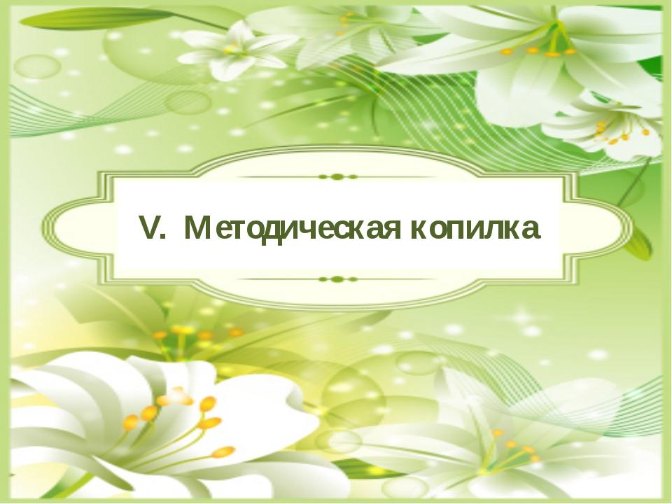 V. Методическая копилка