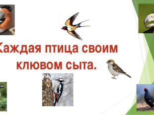 Каждая птица своим клювом сыта.