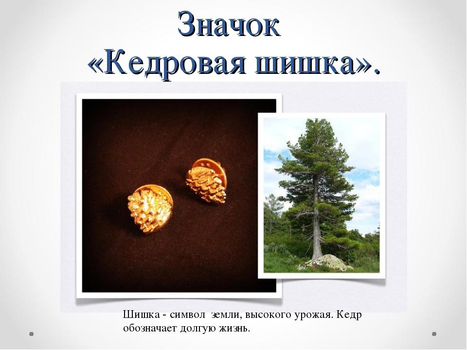 Значок «Кедровая шишка». Шишка - символ земли, высокого урожая. Кедр обознача...