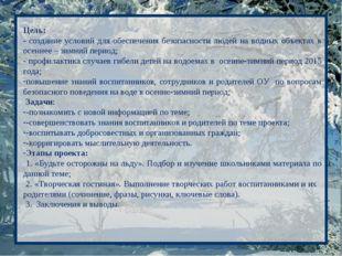 Цель: - создание условий для обеспечения безопасности людей на водных объекта