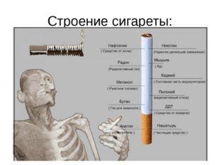 Строение сигареты: