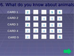 6. What do you know about animals? CARD 1 CARD 2 CARD 3 CARD 4 CARD 5