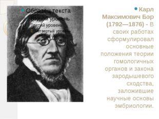 Карл Максимович Бэр (1792—1876)- В своих работах сформулировал основные поло