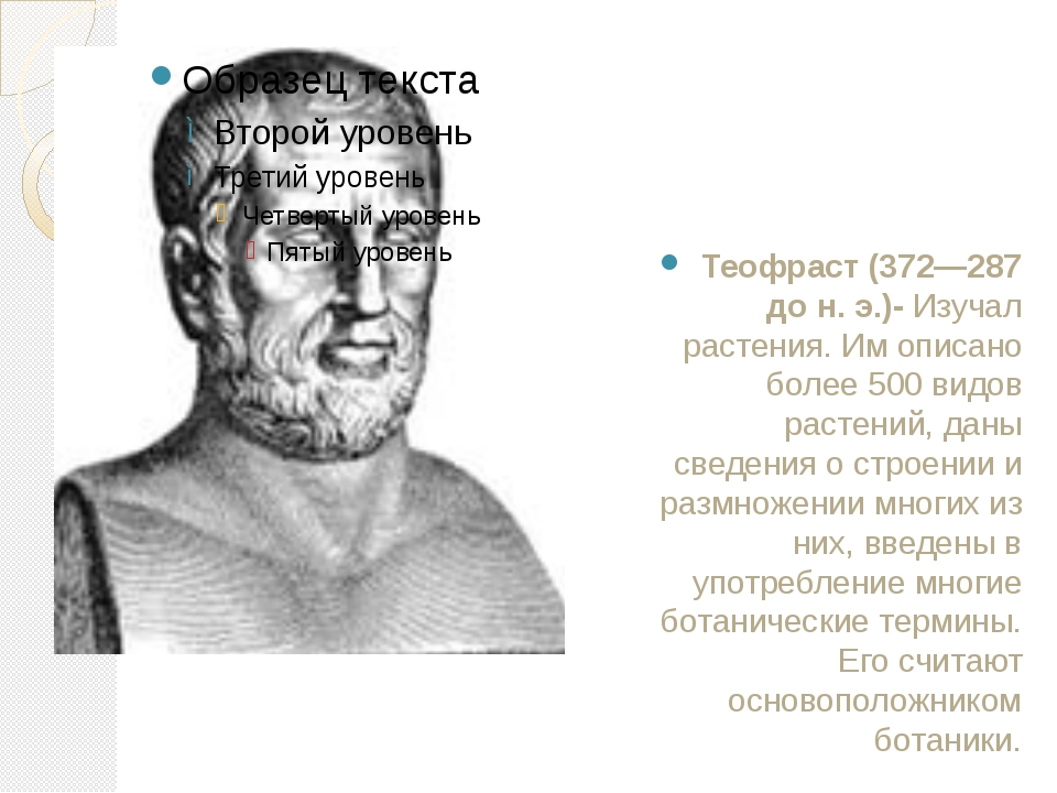 Теофраст (372—287 до н. э.)- Изучал растения. Им описано более 500 видов раст...