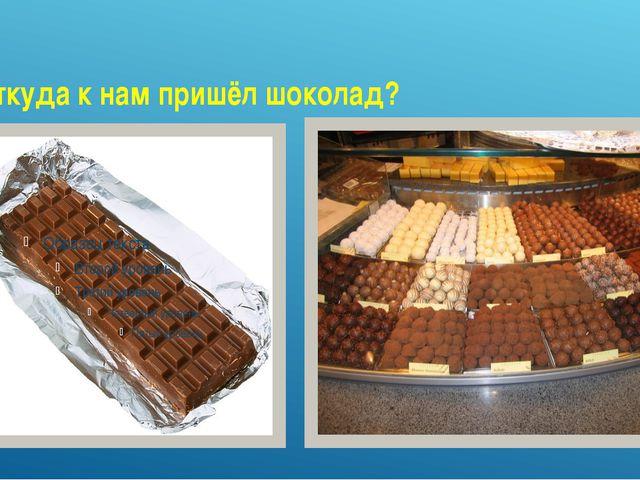 Откуда к нам пришёл шоколад?