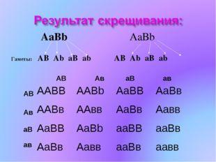 AaBb AaBb Гаметы: AB Ab aB ab AB Ab aB ab Aв AB aB aв AB Aв aB aв AABBAABb