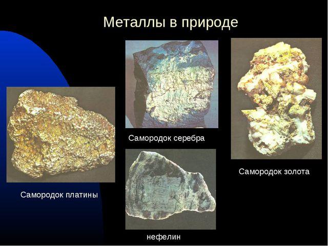 Металлы в природе Самородок платины Самородок серебра Самородок золота нефелин