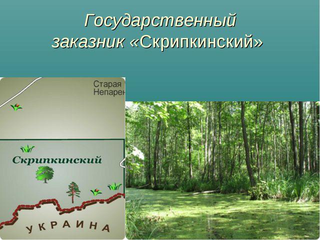 Государственный заказник«Скрипкинский»