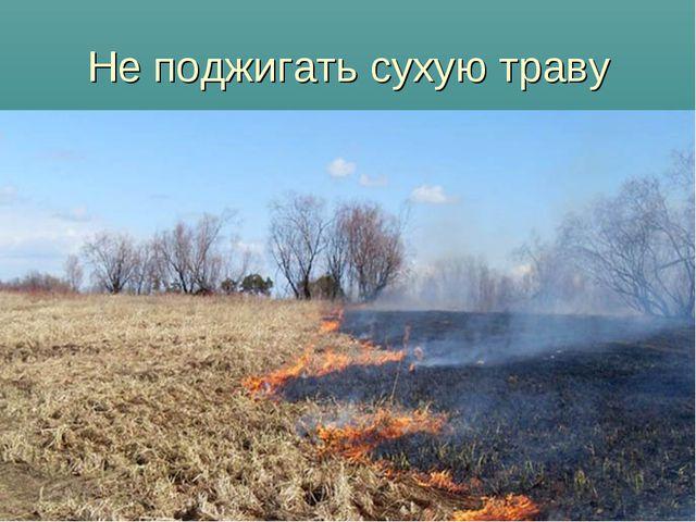Не поджигать сухую траву