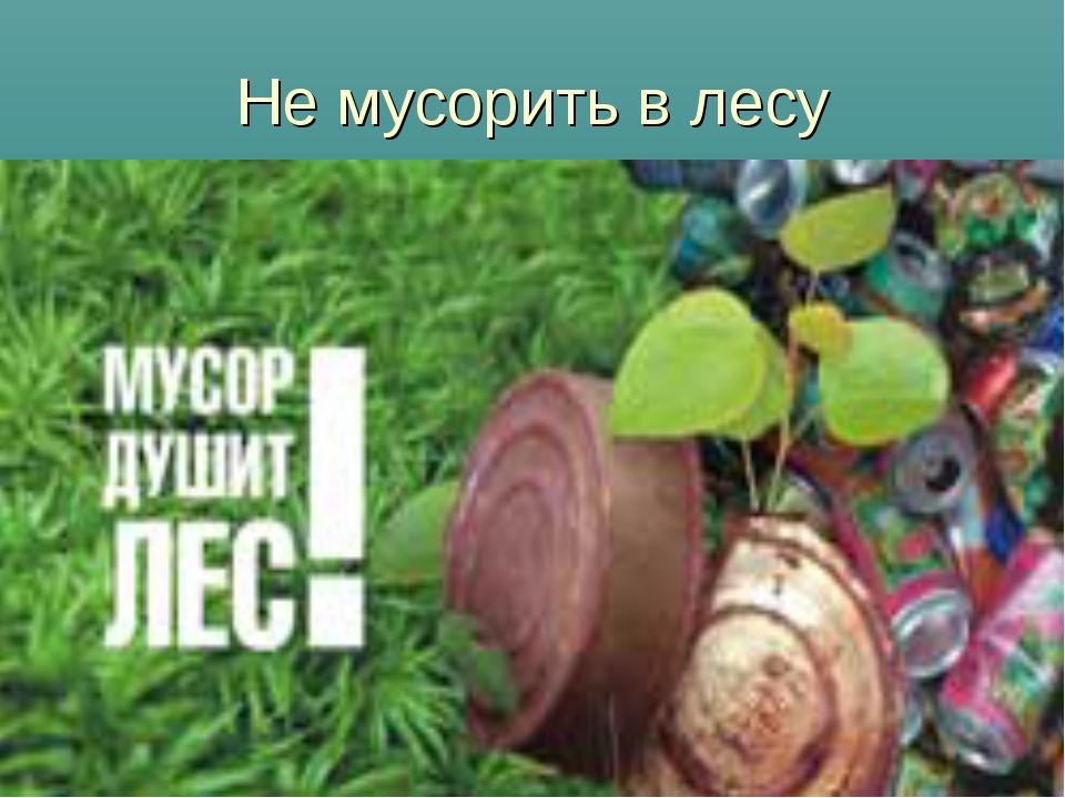 Не мусорить в лесу