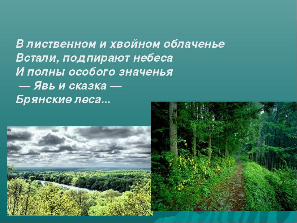 В лиственном и хвойном облаченье Встали, подпирают небеса И полны особого зна...