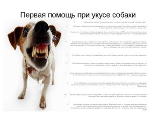Первая помощь при укусе собаки Собака может нанести человеку (особенно ребенк