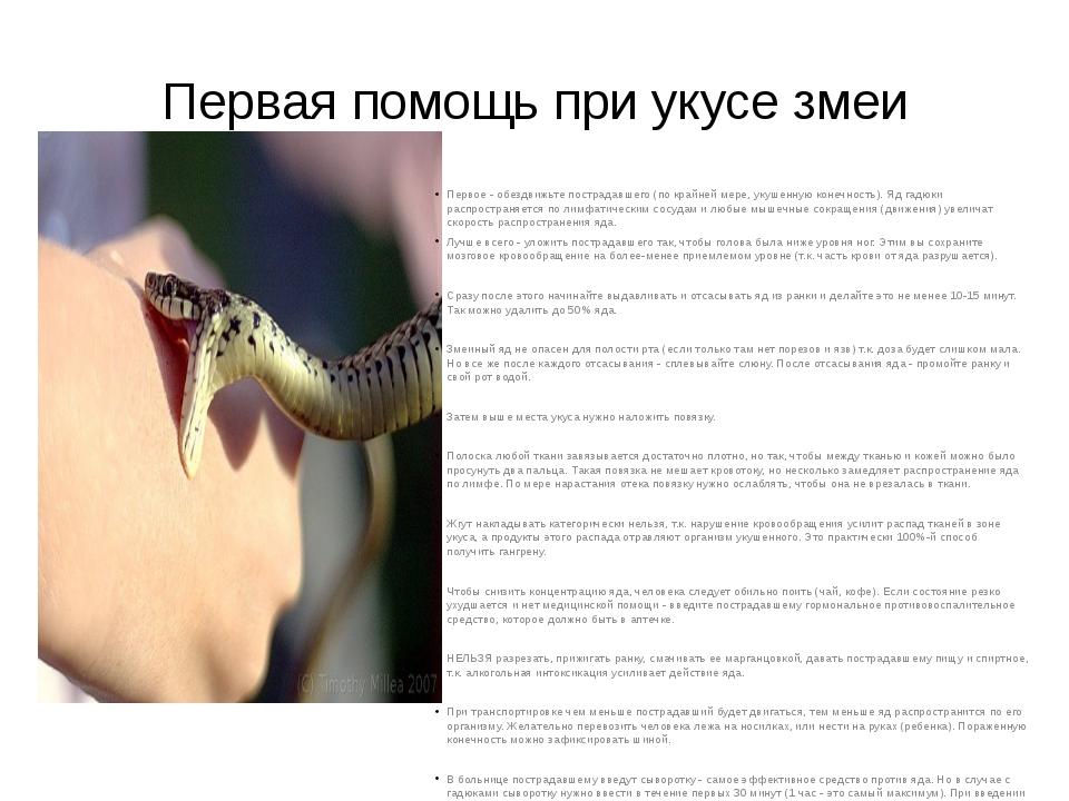 Первая помощь при укусе змеи Первое - обездвижьте пострадавшего (по крайней м...