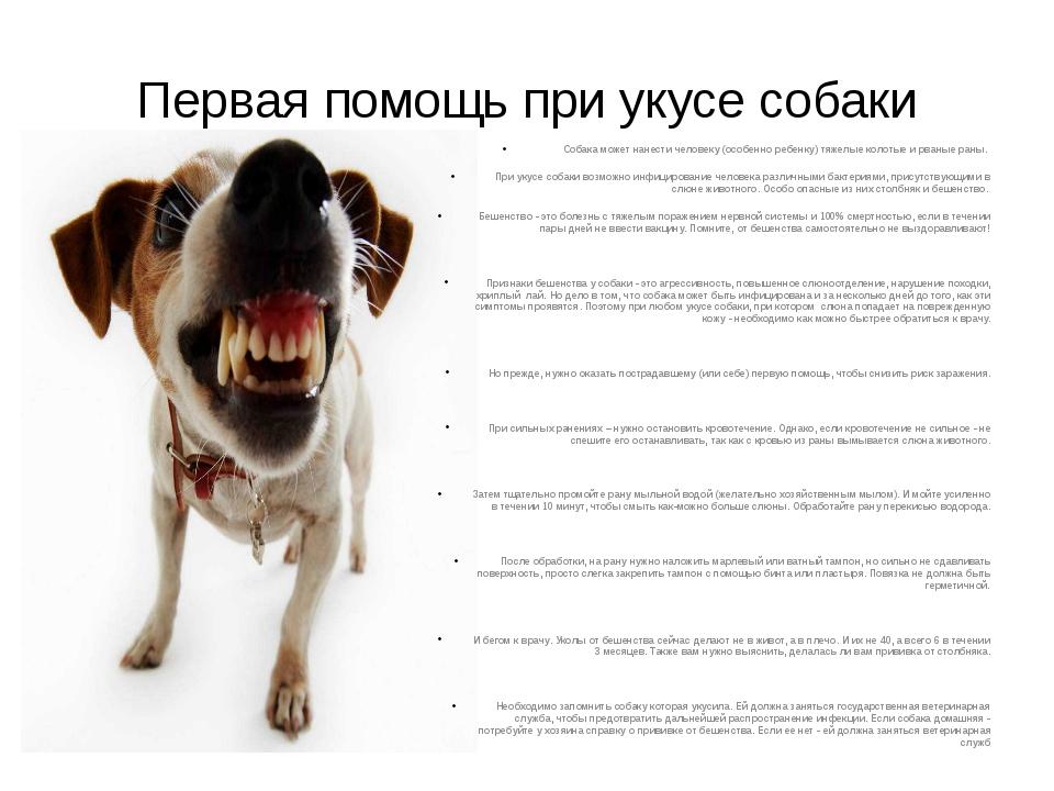 Первая помощь при укусе собаки Собака может нанести человеку (особенно ребенк...