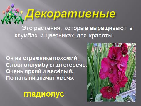 hello_html_m3dde296c.png