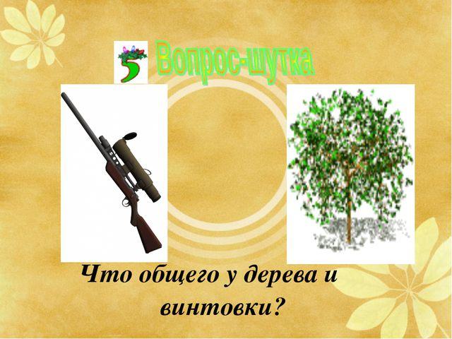 Что общего у дерева и винтовки?