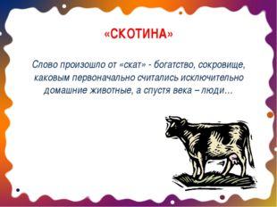 «СКОТИНА» Слово произошло от «скат» - богатство, сокровище, каковым первонача