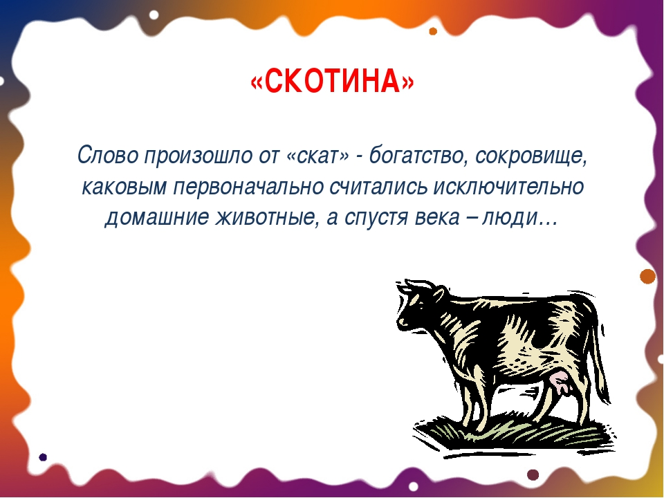 «СКОТИНА» Слово произошло от «скат» - богатство, сокровище, каковым первонача...