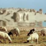 http://neudoff.net/blog/wp-content/uploads/2011/07/mirazh-fata-morgana-150x150.jpg