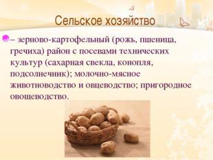 Сельское хозяйство  – зерново-картофельный (рожь, пшеница, гречиха) район с