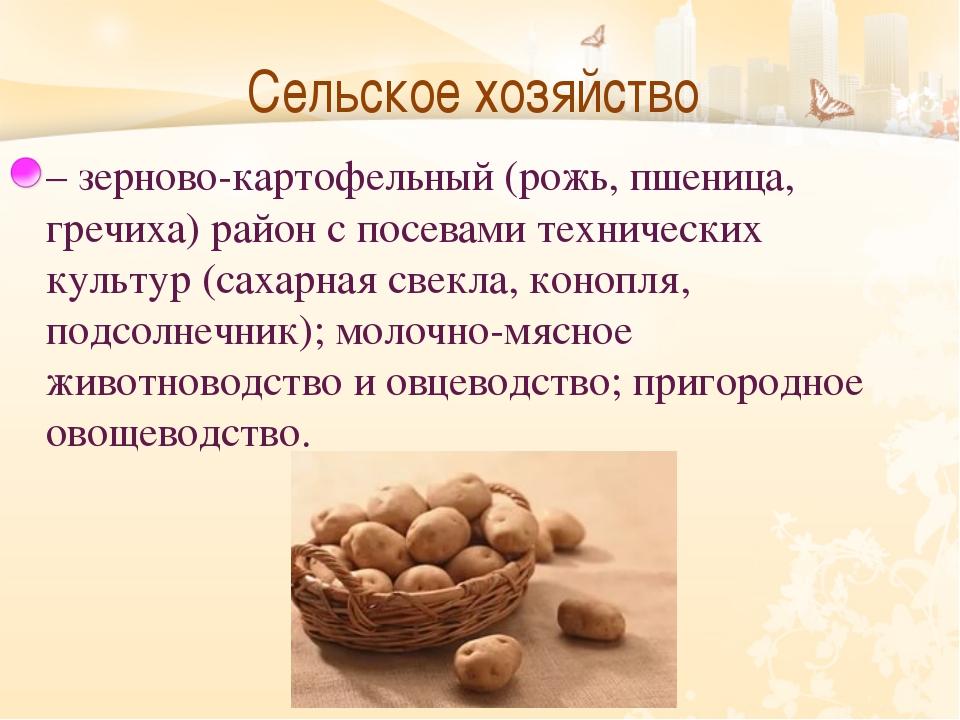 Сельское хозяйство  – зерново-картофельный (рожь, пшеница, гречиха) район с...