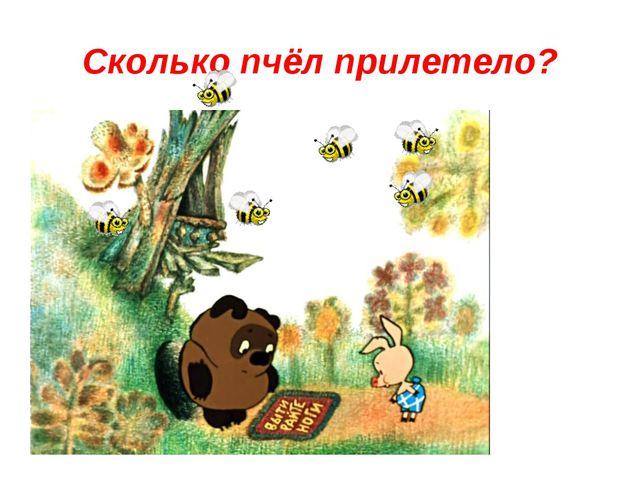 Сколько пчёл прилетело?