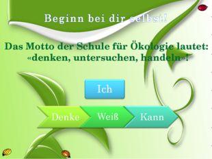 Das Motto der Schule für Ökologie lautet: «denken, untersuchen, handeln»!