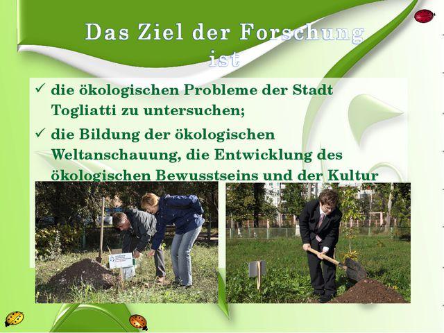 die ökologischen Probleme der Stadt Togliatti zu untersuchen; die Bildung der...