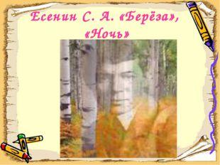 Есенин С. А. «Берёза», «Ночь»