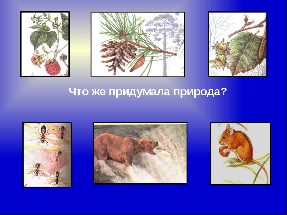 Что же придумала природа?