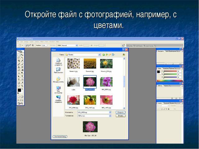 Откройте файл с фотографией, например, с цветами.