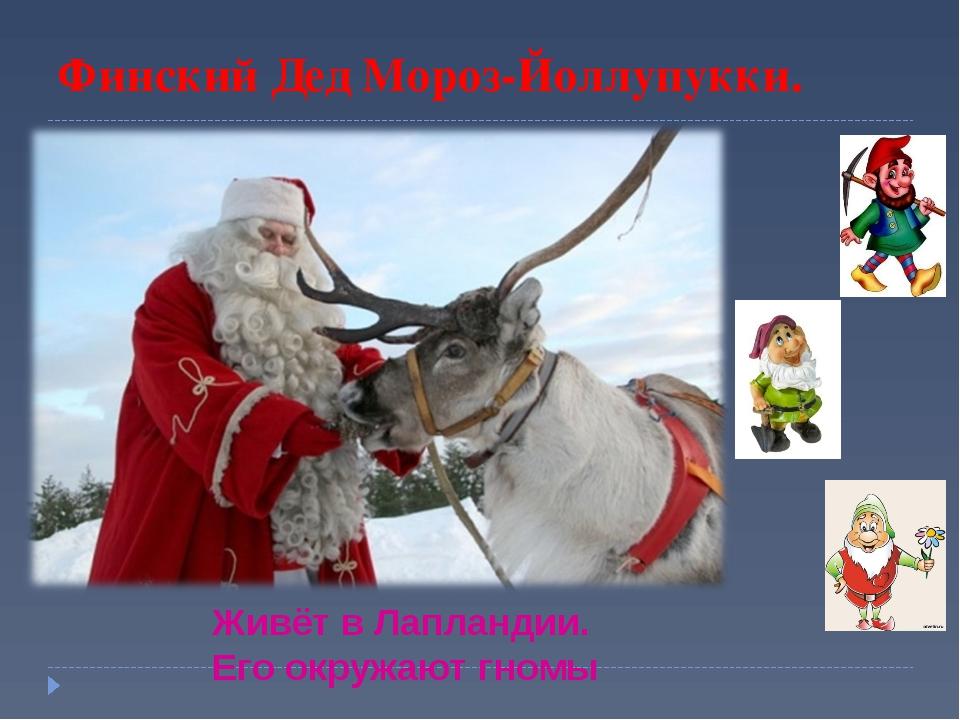 Финский Дед Мороз-Йоллупукки. Живёт в Лапландии. Его окружают гномы