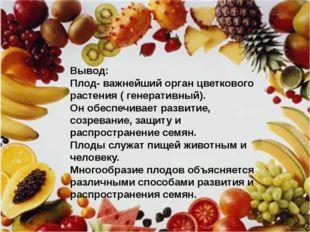 Вывод Плод- важнейший орган цветкового растения ( генеративный). Он обеспечив