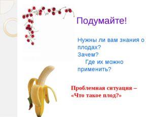 Подумайте! Нужны ли вам знания о плодах? Зачем? Где их можно применить? Проб