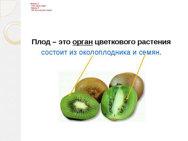 Плод – это орган цветкового растения состоит из околоплодника и семян. Вопрос...