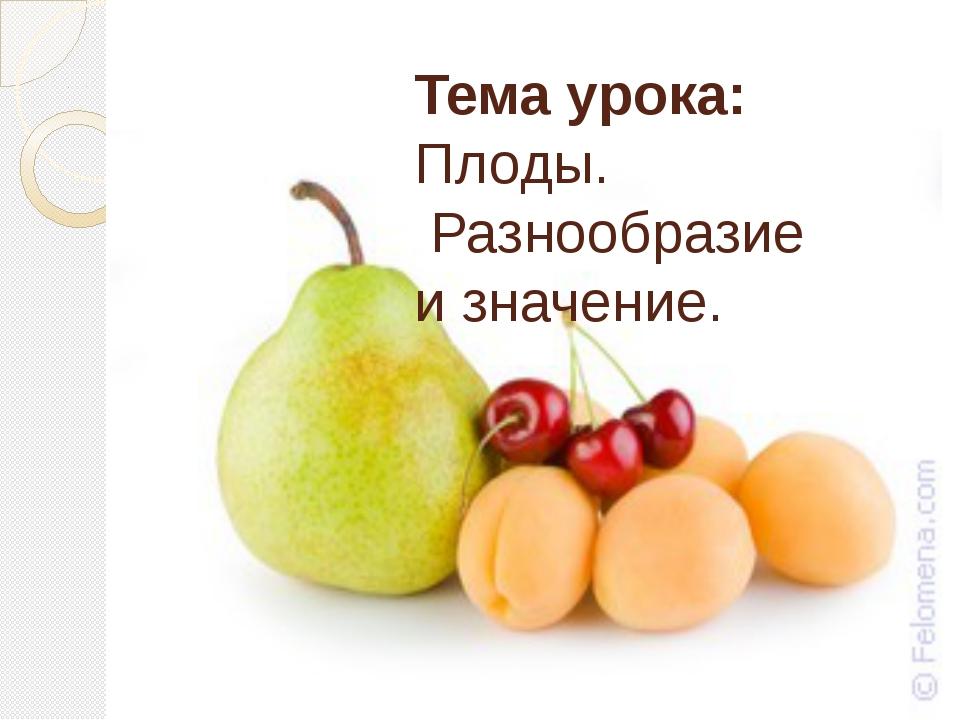 Тема урока: Плоды. Разнообразие и значение.