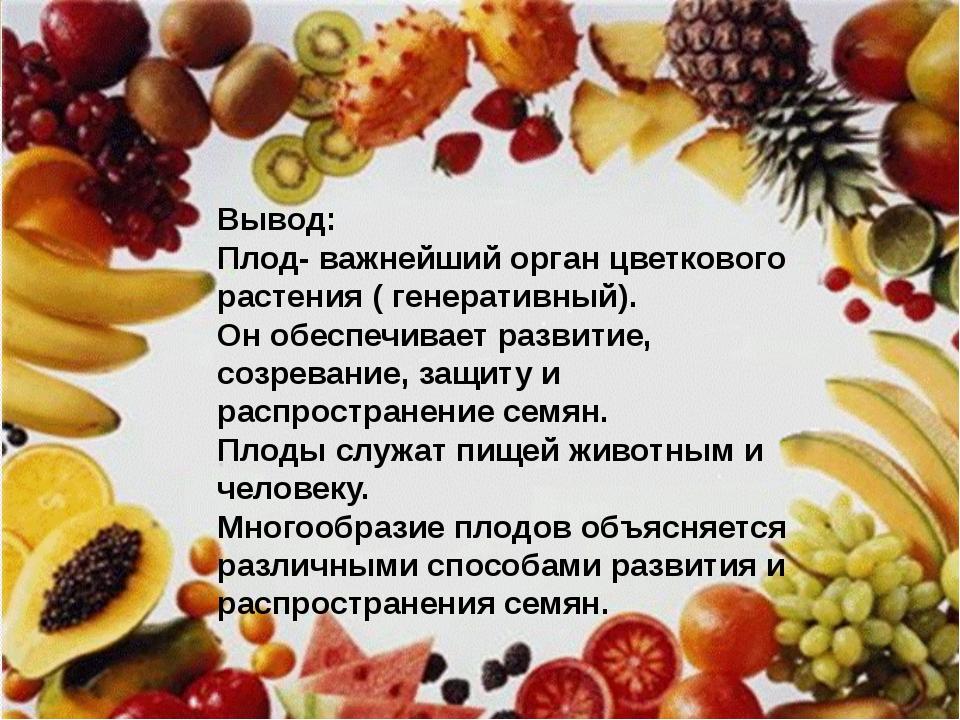 Вывод Плод- важнейший орган цветкового растения ( генеративный). Он обеспечив...