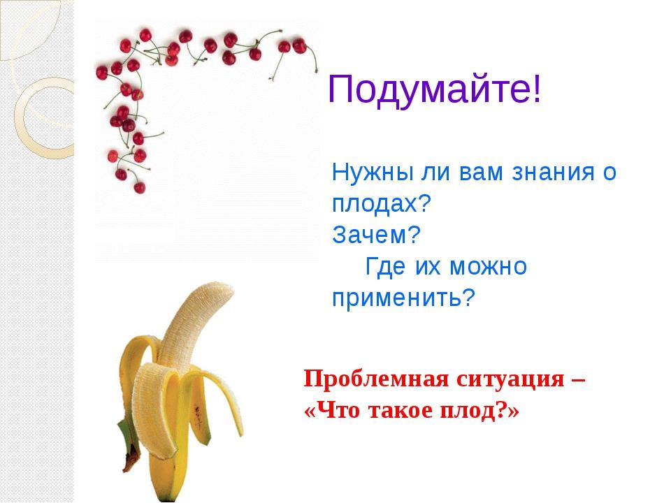 Подумайте! Нужны ли вам знания о плодах? Зачем? Где их можно применить? Проб...